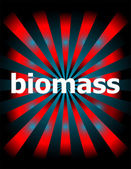 Biomass word with motion rays on background — Stock Photo