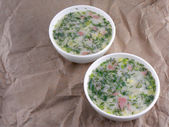 Russian cold vegetable soup on yogurt (sour-milk) base - okroshka — 图库照片