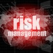 Stock Photo: Management concept: words Risk management on digital screen