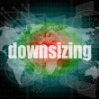 Stock Photo: Business concept: words Downsizing on digital background
