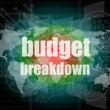 Stock Photo: Business concept: words Budget breakdown on digital screen, 3d