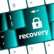 Stockfoto: Recovery text on keyboard key