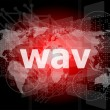 Stock Photo: Digital concept: wav word on digital screen