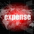 Word expense on digital screen, business concept — Stock Photo #41457361