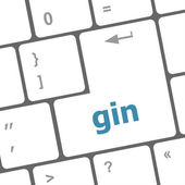 Gin word on keyboard key, notebook computer button — Stock Photo