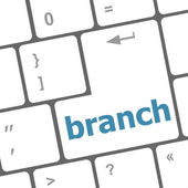 Branch word on keyboard key — Stock Photo