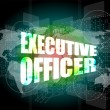 Stock Photo: Executive officer words on digital screen background with world map