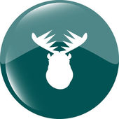Deer head on web icon button isolated on white — Stock Photo