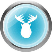 Deer head on web icon button isolated on white — 图库照片