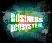 Business ecosystem words on digital touch screen — Stock Photo