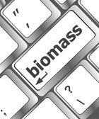 Keyboard keys with biomass word button — Stock Photo