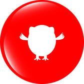 Owl icon button isolated on white — Stock Photo