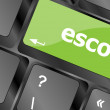 Escort button on computer pc keyboard key — Stock Photo #48978245