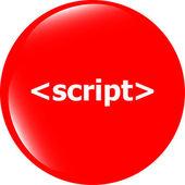 Ícone de sinal de script. símbolo de linguagem de programação. botões de círculos — Fotografia Stock