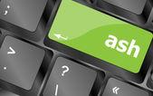 Ash word on keyboard key, notebook computer — Stock Photo