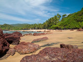Beach in Goa — Stock Photo
