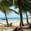 Stock Photo: Beach in Goa