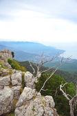 Crimea mountains nature — Stock Photo