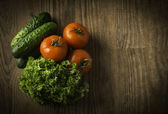 Red tomatoes and a cucumber on green verdure — Foto Stock