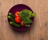 Tomaat komkommer dill — Stockfoto