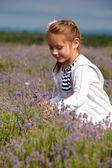 Girl and lavender  — Zdjęcie stockowe