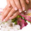 Nail care for women's hands — Stock Photo #19993653