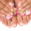 Nail care for women's hands and feet — Stock Photo #19993693