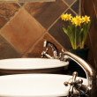 Beautiful bathroom interior — Stock Photo #5161343