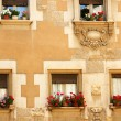 Front with windows with pots and flowers — ストック写真