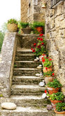 Handles with flowers in the stairs — Stock Photo