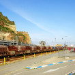 Train with coaches of load in the port of Barcelona — Stock Photo