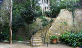 Stairs in the gardens La Tamarita — Stock Photo