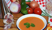 Andalucian gazpacho dish with ingredients — Stok fotoğraf