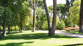 Overview of the Retiro Park in Madrid — Stock Photo