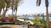 Arrecife de arka plan bağlantı noktasıyla bahçelerinde — Stok fotoğraf