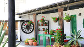 Courtyards houses in Lanzarote — Stock Photo