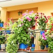 Stock Photo: Facade with balconies and flower pots