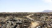 Wild landscape, arid and volcanic — Stock Photo
