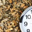 Stock Photo: Watch on dead leaves for backgrounds and textures