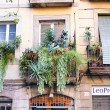 Stock Photo: Balcony with pots in district of LRibera, Barcelona