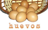 Wicker basket with chicken eggs — Stock Photo