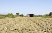 Field prepared for sowing — Stock Photo