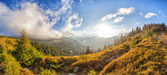 "Panorama ""Sunny morning in the Ukrainian Carpathians"" — Stock Photo"