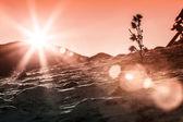 Sonneneruption auf verschneiten pisten — Stockfoto