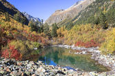Clean mountain lake among trees and rocks of Caucasus — Stok fotoğraf