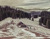 Ontbossing in de oekraïense carpathians.panorama. — Stockfoto