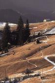 Agriculture in Ukrainian Carpathians — Stock Photo