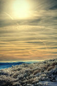 Ice grass and picturesque sky.Hdr. — Stockfoto