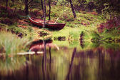 Lake landscape with green forest in Norway — Foto Stock