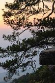 Sunset at Pha Lom Sak cliff in Phu Kradueng, Thailand. — Stock Photo